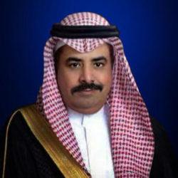 Ahmad Al Johany